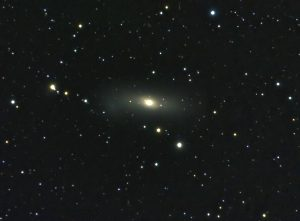 NGC 1023 | Perseus