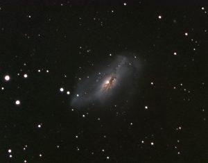 NGC 2146 | Camelopardis