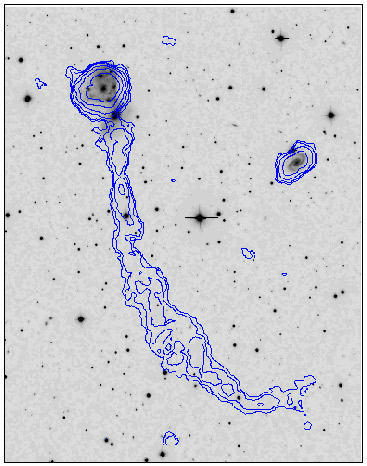NGC 2444 | Lynx' Ring Galaxy | Lynx