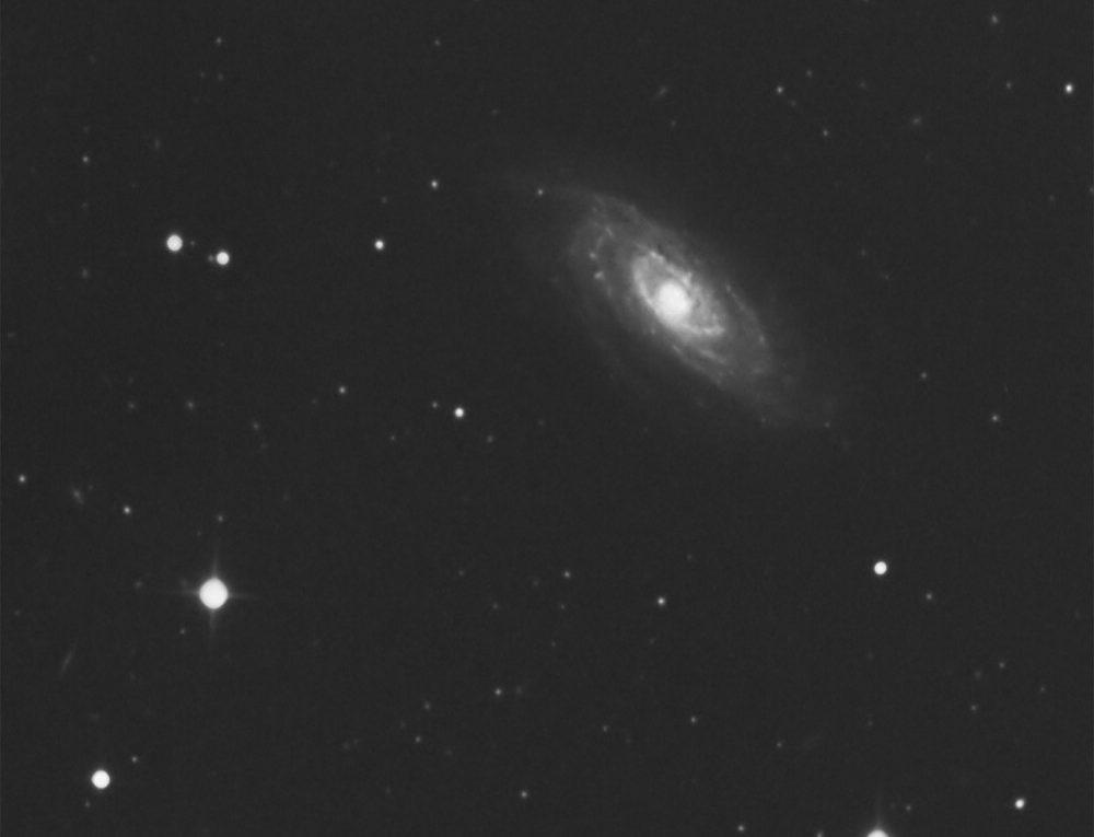 NGC 3705 | Leo