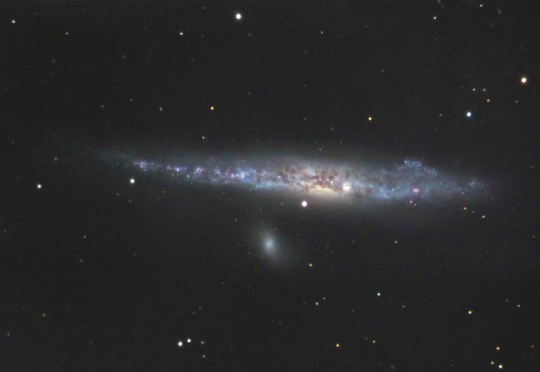 NGC 4631 | Herings Galaxie | Arp 281 | Ursa Major