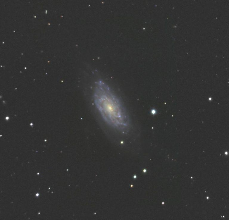 NGC 6015   Draco