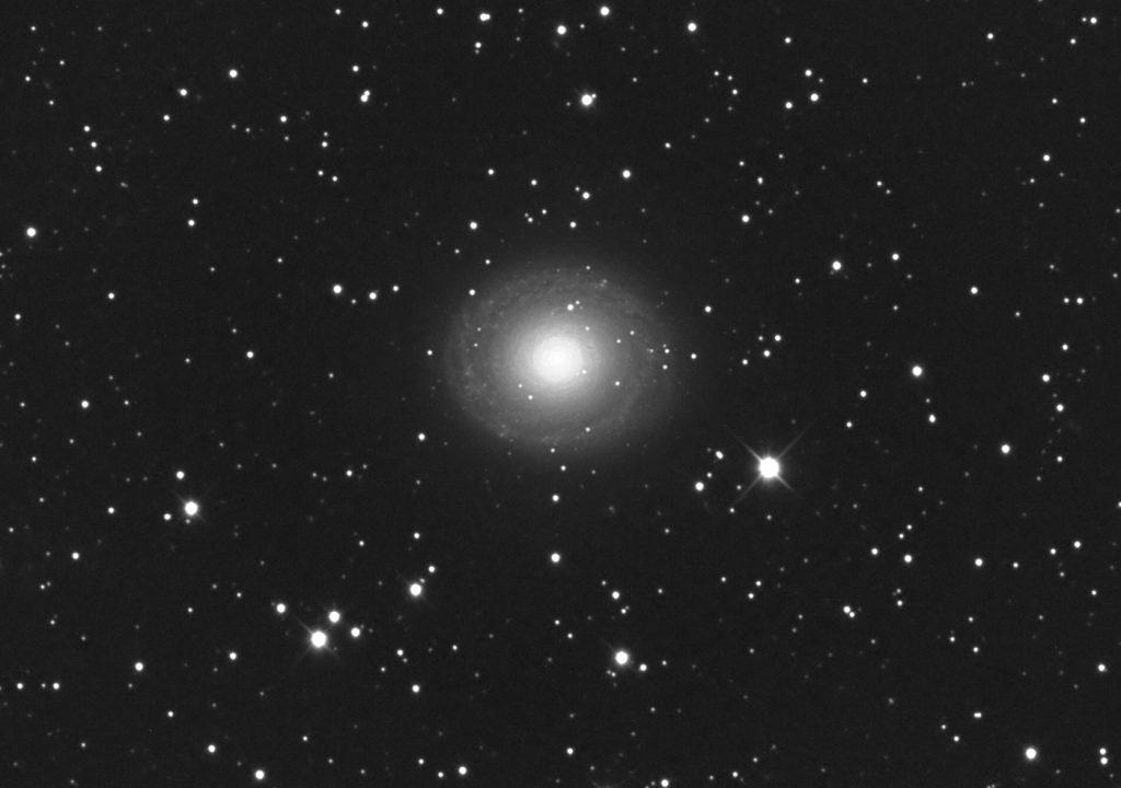 NGC 7217 | Pegasus