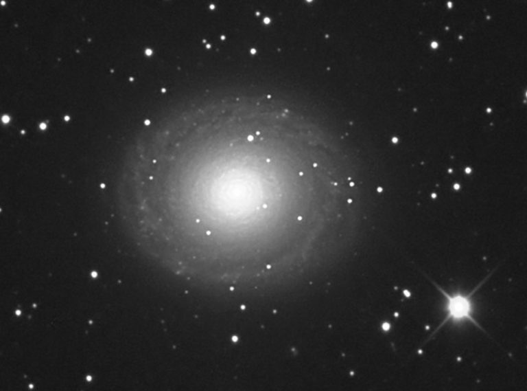 NGC 7217   Pegasus   Detail